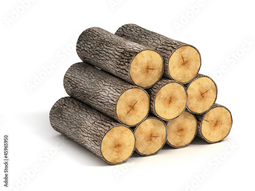 stack of firewood logs on white background Poster Mural XXL