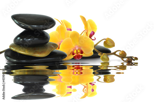 Akustikstoff - Orchideen 88 (von K.-U. Häßler)