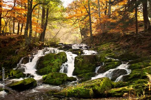 jesienia-wodospad-w-lesie