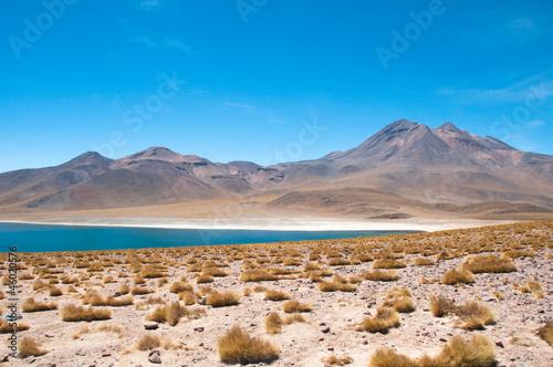 Cadres-photo bureau Amérique du Sud Miscanti lagoon in San Pedro de Atacama, Chile