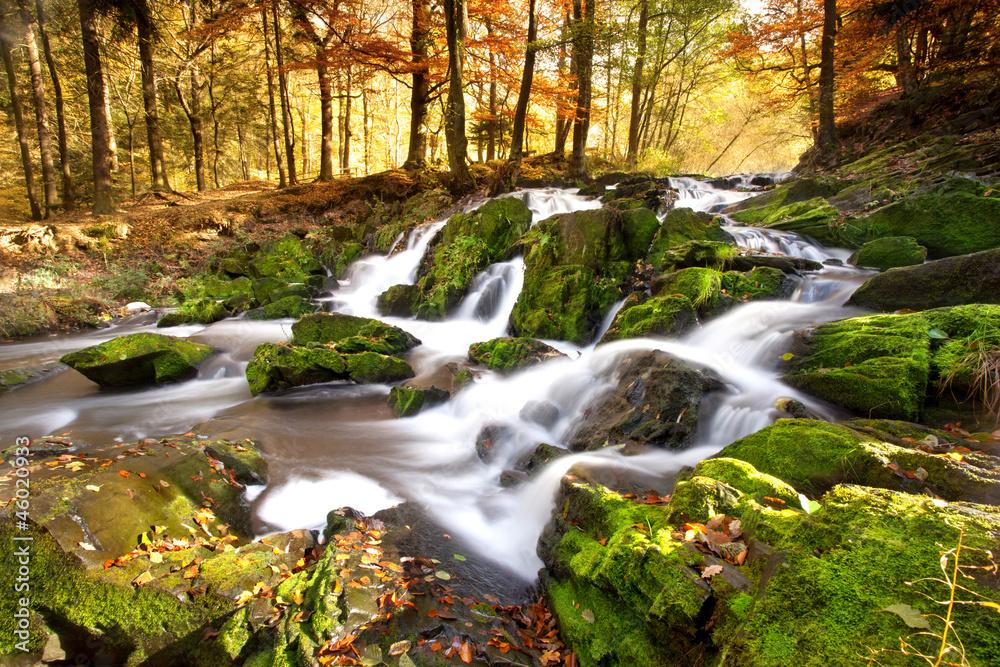 Fototapeta Wasserfall im Herbstlicht
