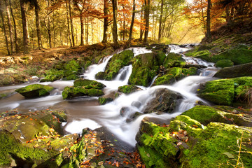 Wasserfall im Herbstlicht