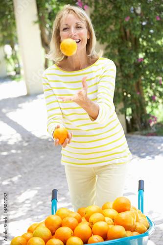 buy stocks tangerine