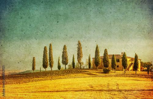 Fotobehang Olijf vintage tuscan landscape