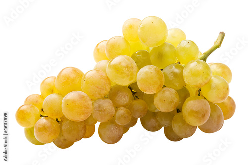 Fényképezés  White grape (riesling) fully isolated