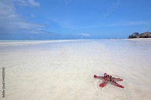 Poster Zanzibar Zanzibar beach