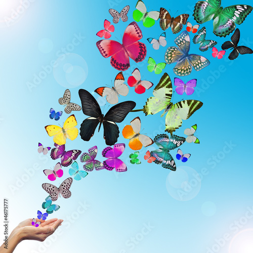 Tuinposter Vlinders Hands releasing butterflies
