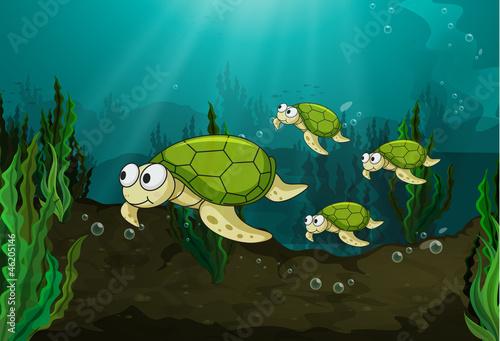 Recess Fitting Submarine turtles