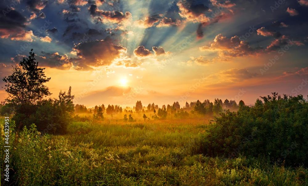 Fototapety, obrazy: Landscape, sunny dawn in a field