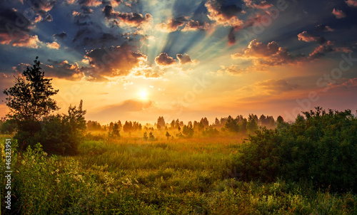Photo Landscape, sunny dawn in a field