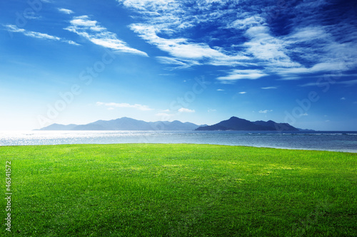 Wall mural - grass and sea in sunset time