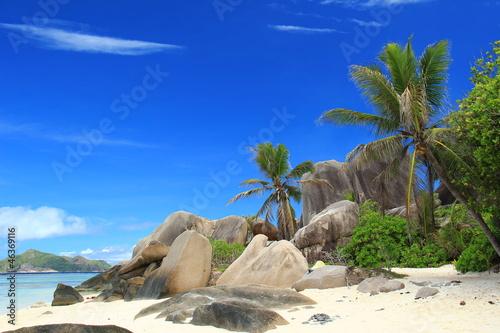 Fotografie, Obraz  Plage des Seychelles