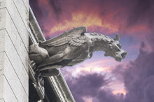 Gargoyles Of Notre Dame Cathedral In Paris, France