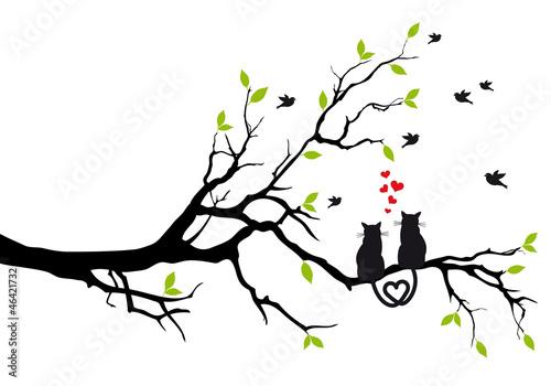 zakochane-koty-na-galezi-drzewa