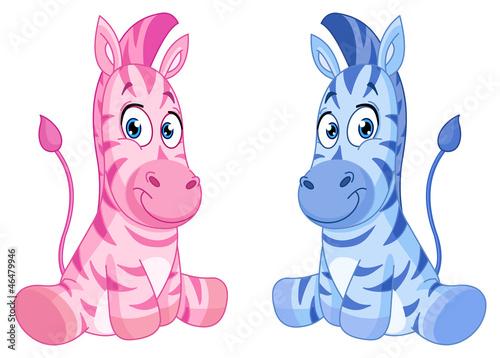 zebry-dzieciece