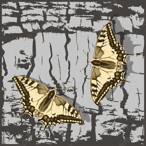 Foto op Plexiglas Vlinders in Grunge Flying butterfly over grunge wall