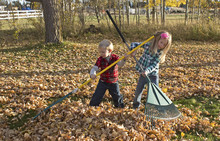 A Young Boy And A Girl Raking ...