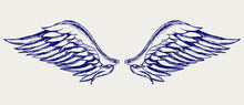 Angel Wings. Doodle Style