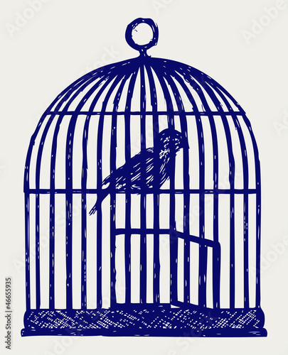 Recess Fitting Birds in cages An open brass birdcage and bird. Doodle style