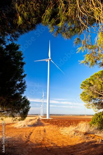 Fotobehang Molens Windmills