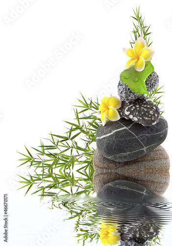 Plissee mit Motiv - composition galet, bambou et fleurs