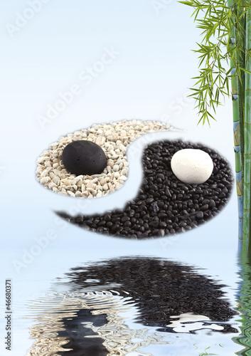 Fotografia  concept zen bambou yin yang