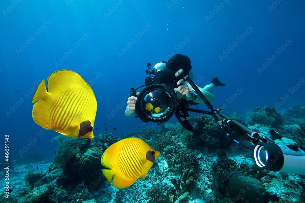 Fototapeta Underwater Photographer scuba diving with camera  in Red sea