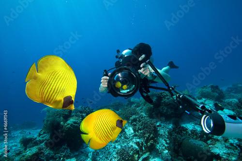 Underwater Photographer scuba diving with camera  in Red sea Fototapeta