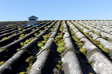 Old And Mossy Roof