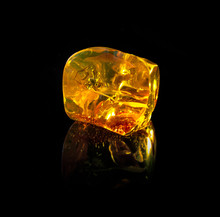 Ancient Baltic Amber Stones  A...