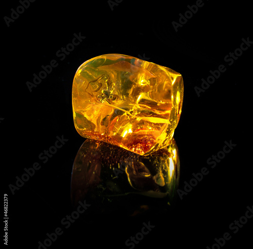 Fotomural Ancient Baltic amber stones  and dragonfly black