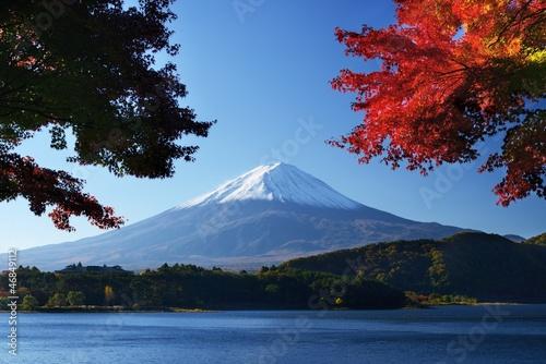 Mount Fuji - 46849112