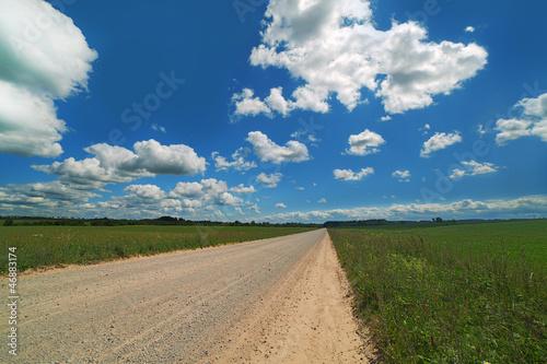 Fototapety, obrazy: Road in summer.