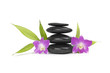 zen stones with two orchid and bamboo leaf, isolated