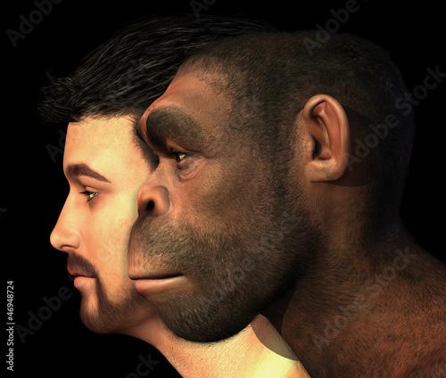 Fototapeta Modern Human and Homo Erectus Man Compared obraz