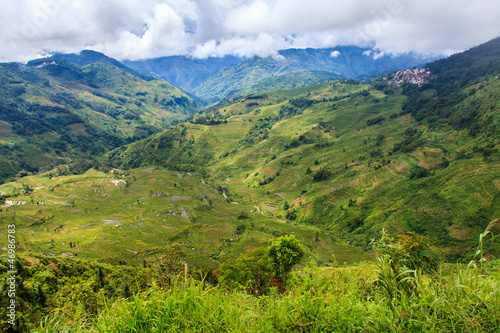 Staande foto Bleke violet Green valley landscape