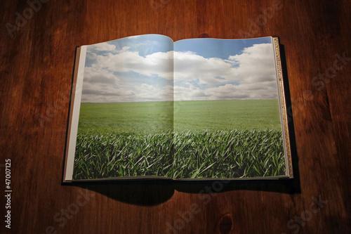 Valokuva  Libro abierto con un paisaje verde