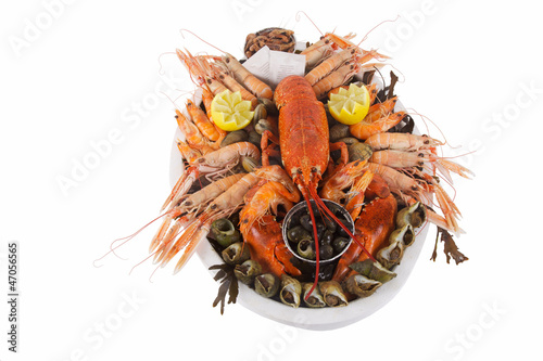 Carta da parati homard sur plateau de fruits de mer