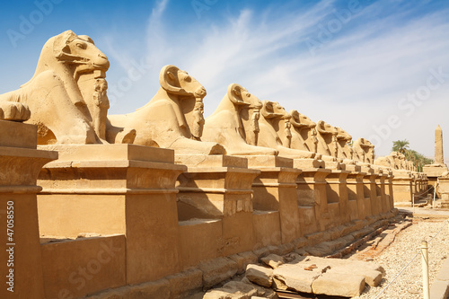 In de dag Egypte Sphinxes avenue. Luxor, Egypt