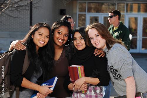 Fotografie, Obraz  Group of Diverse Students