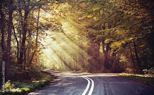 Tuinposter Aubergine Great shoot of sunbeams above the road