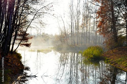 beautiful image of autumn park