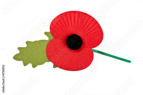 Canvas Prints Poppy Poppy