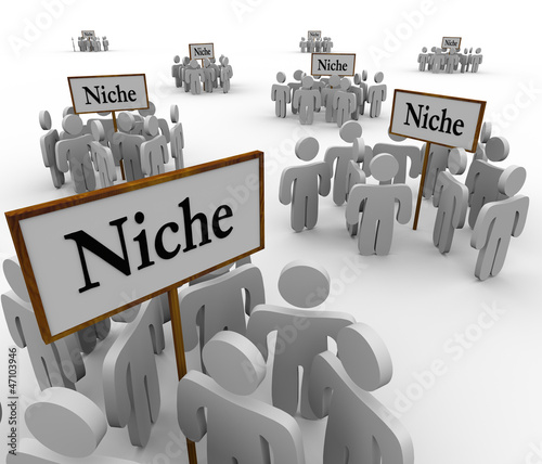 Many Niche Groups People Clustered Around Niches Signs Tablou Canvas