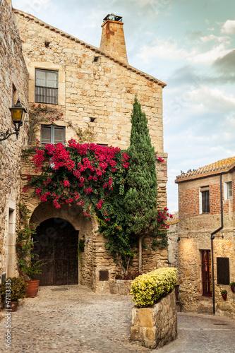 Obraz na plátně Pals Village