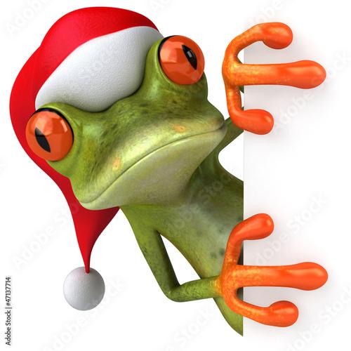 Christmas frog Wallpaper Mural