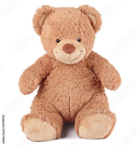 медведь #47149702
