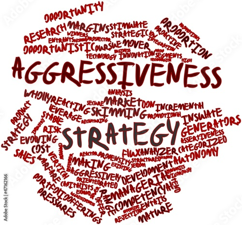 Photo Word cloud for Aggressiveness strategy