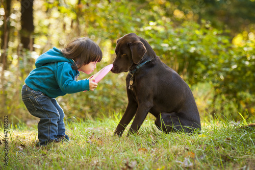 Obraz Young child playing fetch with dog - fototapety do salonu