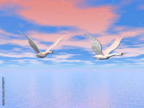 Wall Murals Birds, bees Swans flying - 3D render